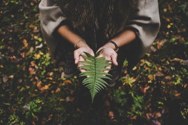Ayurveda medidina natural india -Sayoni-Care-sobre nosotros