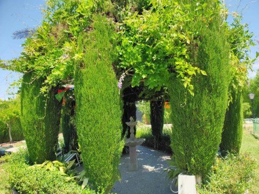 Ayurveda. Retiros de purificacion ayurvedica personalizados en Granada - Jardin