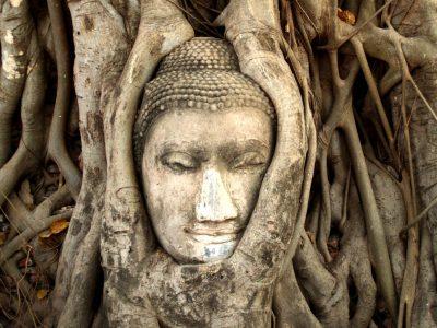 Terapia Sagrada de Curación Uterina Ayurveda
